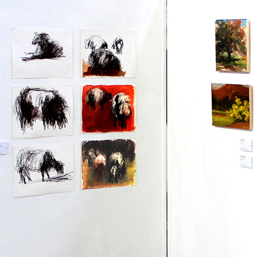 Selection of images by Honours student Suzanne McLeod from 'Herding the Animal' 2015