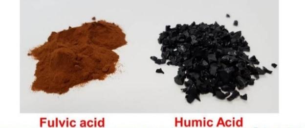 Fulvic acid humic acid