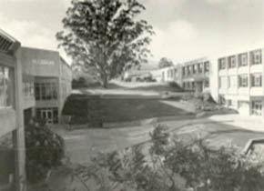 Mt Helen Union Building, including Stage Two additions, on the left hand side of the Tree of Knowledge, 1979