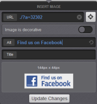 Toggle image options dialogue box with example asset ID in URL field and Alt text of Find us on Facebook with preview of Facebook logo