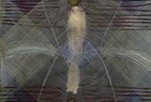 Vikki Nash, Transducer Series, L: Merge, 2013. Dye, ink & conte on paper 150 x 101cm. Courtesy the artist