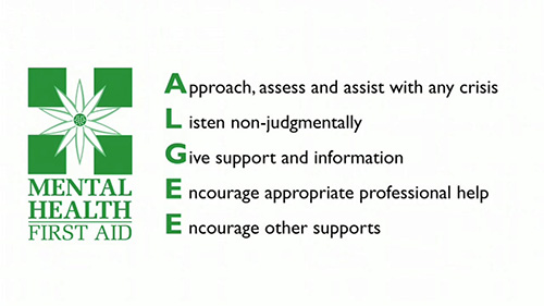 Mental Health First Aid Action Plan. Approach, assess and assist with any crisis. Listen non-judgementally. Give support and information. Encourage appropriate professional help. Encourage other supports.