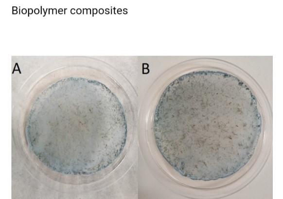 Biopolymer composites