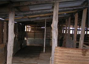 Shearing-shed-290x210