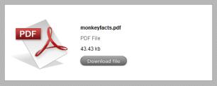 PDF file prompt