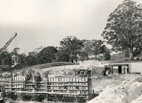 Mt Helen Union Building under construction, 1972. Builders cars are shaded by the Tree of Knowledge